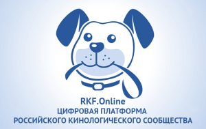 Баннер РКФ